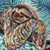Painted Sloth II