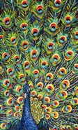 Lavish Peacock I
