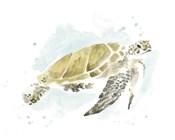 Watercolor Sea Turtle Study I