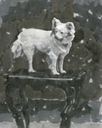Dog Study III