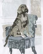 Dog Study V