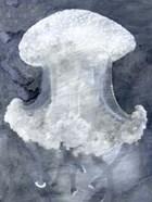 Indigo Jellyfish II