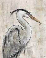 Grey Heron I