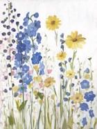 Periwinkle Wildflowers I