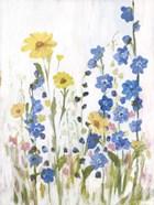 Periwinkle Wildflowers II