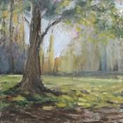 Path to the Tree I