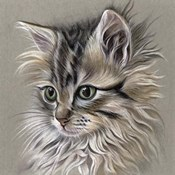 Kitten Portrait I