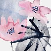 Pink Water Lilies III
