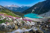 British Columbia, Meltwater Stream Flows Past Wildflowers Into Upper Joffre Lake