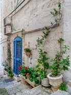Italy, Puglia, Brindisi, Itria Valley, Ostuni Blue Door And Potted Plants