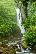 Costa Rica, La Paz Waterfall Garden Rainforest Waterfall And Stream