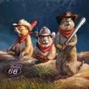 Amarillo Sod Poodles