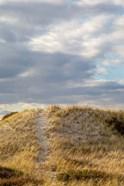 Dunes Trail
