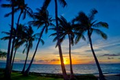 Sunset And Silhouetted Palm Trees, Kihei, Maui, Hawaii
