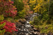 New York, Adirondack State Park Stream And Forest In Autumn