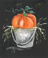 Pumpkin in a Bucket