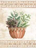 Southwest Terracotta Succulents I