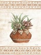 Southwest Terracotta Succulents II