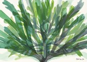 Tropical Sea Grass 2