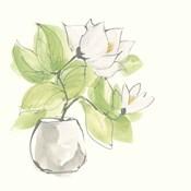 Plant Magnolia II