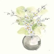 Plant Blossom II