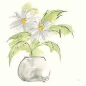 Plant Daisy I