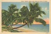 Florida Postcard III