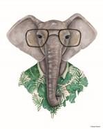 Elephant in Eye Glasses