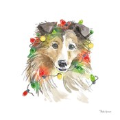 Holiday Paws IX on White