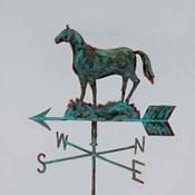 Rural Relic Horse