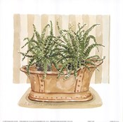Fern Tub