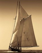 Under Sail I