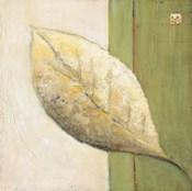 Leaf Impression - Olive