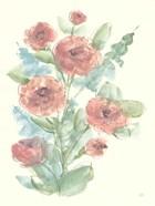 Camellia Bouquet II