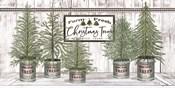 Galvanized Pots White Christmas Trees II