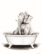 Elephant in Tub