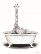 Giraffe in Tub