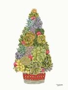 Santa's Succulents
