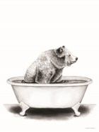 Bear in Tub