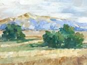 Sunny Field II