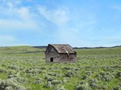 Barn Scene III