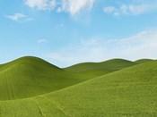 Farmscape Photo III