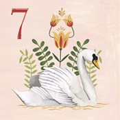 Twelve Days VII