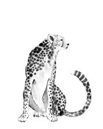 Chrome Cheetah I
