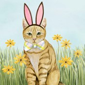 Easter Cats IV