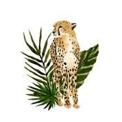 Cheetah Outlook I