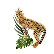 Cheetah Outlook II