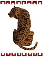 Asian Tiger I