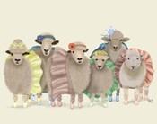 Ballet Troupe Sheep