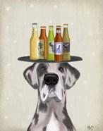 Great Dane Harlequin Beer Lover